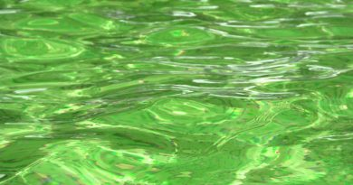 Como solucionar agua verde piscina