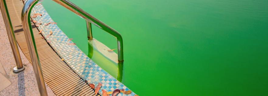 Agua verde piscinas