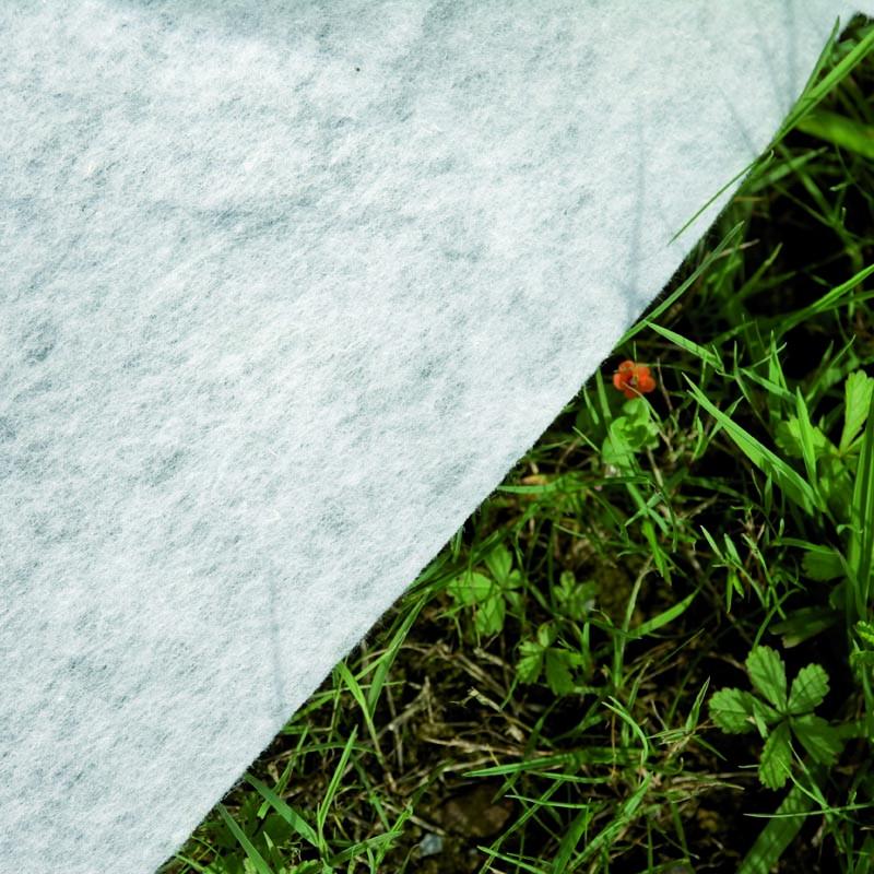 Tapiz del suelo de la Piscina enterrada Moorea ovalada Gre