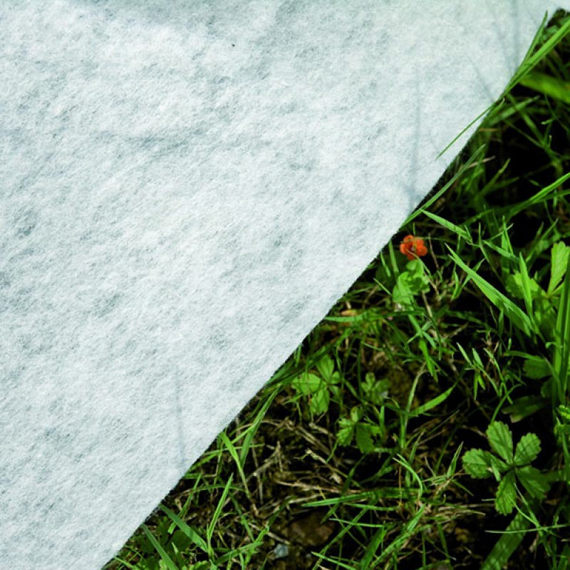 Tapiz de suelo Piscina Madagascar Ovalada