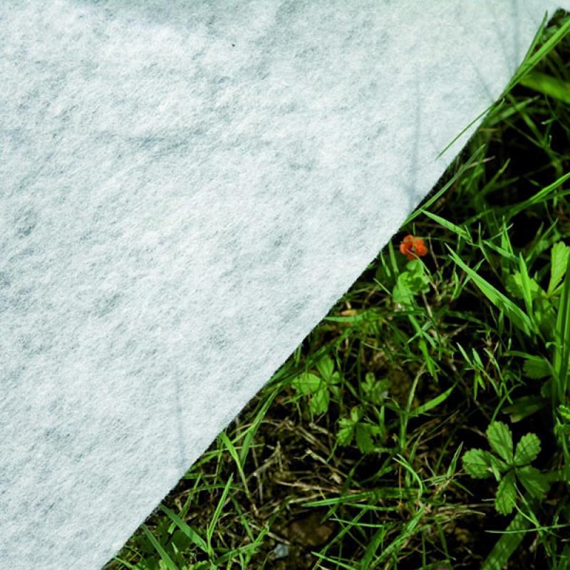Tapiz suelo Piscina enterrada Sumatra ovalada